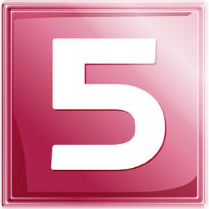 NET5 logo
